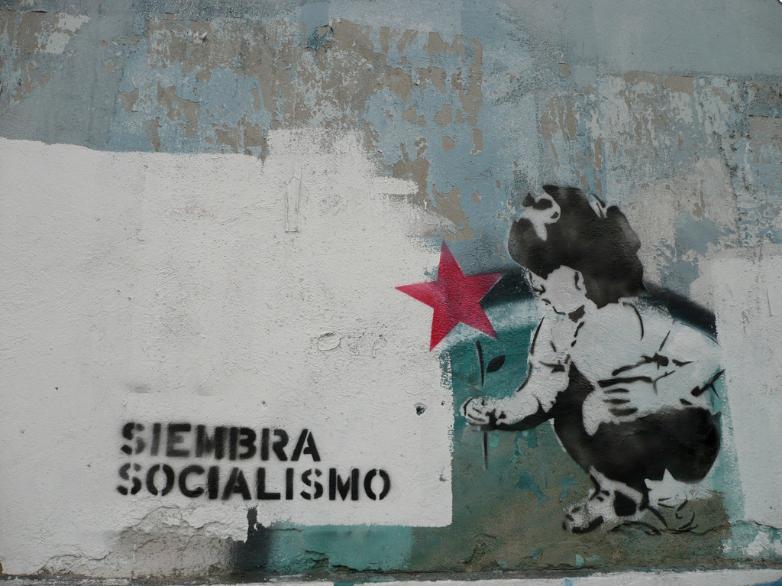 Chronique d'Espagne (2/2): le surprenant cabinet du Dr. Sánchez