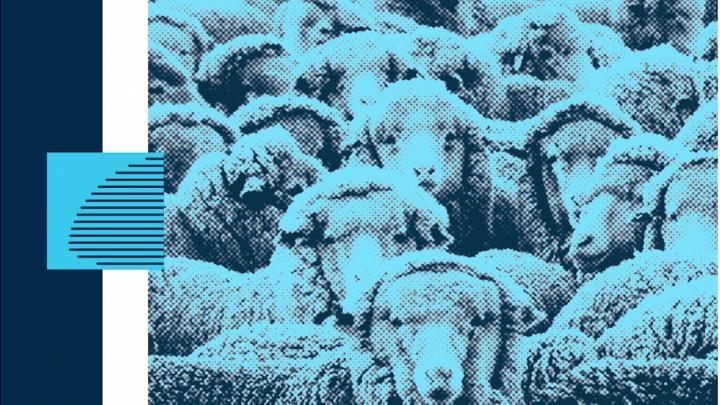 La décentralisation est une arnaque : recension de L'Illusion localiste d'Aurélien Bernier